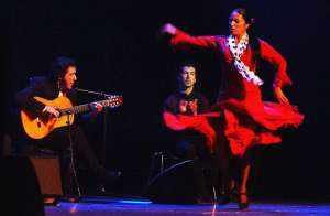Flamenco300
